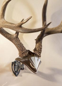 bonebracket-skullcap-combo-5