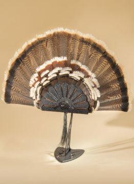 turkeyhooker-1